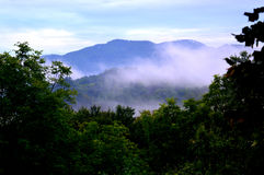 Foresta e montagne fotografia stock