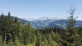 Foresta e montagne Immagini Stock Libere da Diritti