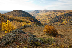 Foresta e montagne di autunno Fotografie Stock Libere da Diritti
