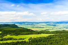 Foresta e montagne di verde del paesaggio di estate Fotografia Stock Libera da Diritti