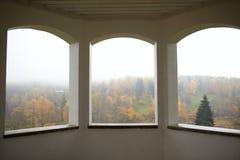 Foresta e nebbia di autunno. Immagini Stock