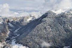 Foresta e villaggio della montagna di inverno Fotografia Stock