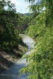 Foresta ed acqua in Soci fotografia stock