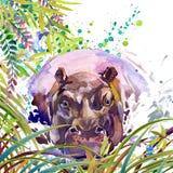 Foresta esotica tropicale, foglie verdi, fauna selvatica, ippopotamo, illustrazione dell'acquerello natura esotica insolita del f Immagine Stock