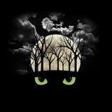 Foresta frequentante di Halloween Immagine Stock Libera da Diritti