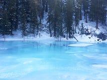 Foresta ghiacciata del lago Kanas nell'inverno Fotografie Stock Libere da Diritti