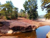 Foresta India di Satpura Fotografia Stock Libera da Diritti