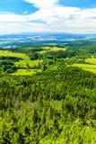 Foresta ispiratrice e montagne di verde del paesaggio di estate Immagini Stock