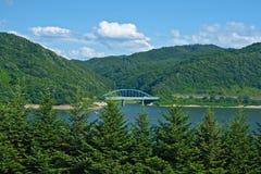 Foresta & lago Fotografia Stock Libera da Diritti