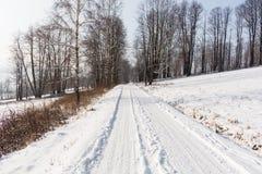 Foresta leggiadramente di inverno nella neve Orario invernale Caduta pesante della neve di inverno Alberi di inverno nella neve B Fotografia Stock Libera da Diritti