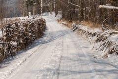 Foresta leggiadramente di inverno nella neve Orario invernale Caduta pesante della neve di inverno Alberi di inverno nella neve B Fotografie Stock Libere da Diritti