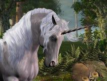 Foresta magica illustrazione di stock