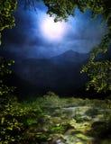 Foresta magica Fotografie Stock Libere da Diritti