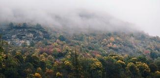 Foresta magica autunnale nella nebbia Immagine Stock Libera da Diritti