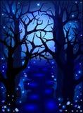 Foresta magica misteriosa nella luce della luna Immagini Stock Libere da Diritti