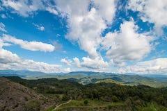 Foresta in montagna sul cielo blu Immagine Stock Libera da Diritti