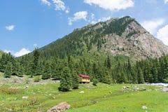 Foresta, montagne e cabina Fotografia Stock
