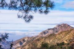 Foresta nazionale di Los Angeles sul modo al Monte Wilson Fotografia Stock