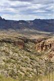 Foresta nazionale di Tonto, Arizona U S Ministero dell'agricoltura fotografia stock libera da diritti