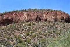 Foresta nazionale di Tonto, Arizona U S Ministero dell'agricoltura Fotografia Stock