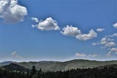 Foresta nazionale di Tonto, Arizona U S Ministero dell'agricoltura, Stati Uniti fotografie stock libere da diritti