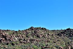 Foresta nazionale di Tonto, fuori dalla strada principale 87, l'Arizona U S Ministero dell'agricoltura, Stati Uniti fotografia stock