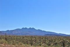 Foresta nazionale di Tonto, fuori dalla strada principale 87, l'Arizona U S Ministero dell'agricoltura, Stati Uniti fotografie stock