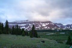 Foresta nazionale di Uinta nell'Utah Fotografie Stock Libere da Diritti