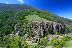 Foresta nazionale Wyoming del Bighorn Immagini Stock Libere da Diritti