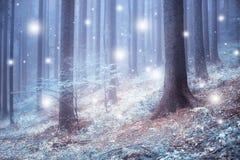 Foresta nebbiosa blu molle con le precipitazioni nevose astratte Immagine Stock