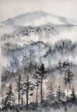 Foresta nebbiosa del pino Fotografie Stock