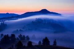 Foresta nebbiosa della bella atmosfera con un picco fotografia stock