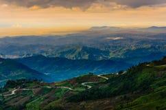 Foresta nebbiosa della montagna Fotografia Stock