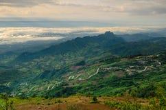 Foresta nebbiosa della montagna Fotografie Stock Libere da Diritti