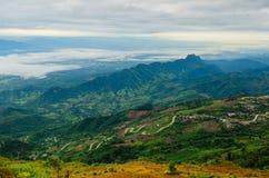Foresta nebbiosa della montagna Immagine Stock Libera da Diritti