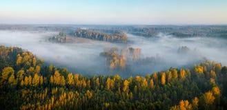 Foresta nebbiosa ed alba della siluetta di autunno con il raggio di sole, tiro di foto in fuco fotografie stock libere da diritti
