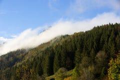 Foresta nebbiosa nelle montagne bavaresi Immagini Stock Libere da Diritti
