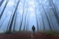 Foresta nebbiosa romantica ed uomo scuro Immagine Stock