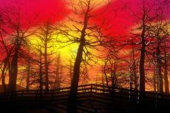 Foresta nella caduta Fotografie Stock Libere da Diritti