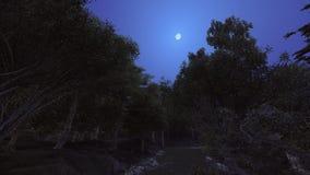 Foresta nella notte e nella luna così luminose Fotografia Stock
