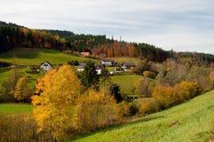 Foresta nera Germania Fotografia Stock