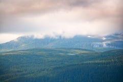 Foresta nuvolosa della montagna Fotografie Stock