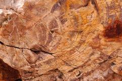 Foresta petrificata, Arizona, U.S.A. Fotografie Stock Libere da Diritti
