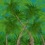 Foresta pluviale royalty illustrazione gratis
