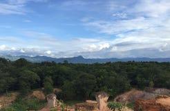 Foresta pluviale in Tailandia Fotografia Stock