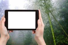 foresta pluviale turistica del photographswet in Longsheng Fotografie Stock Libere da Diritti