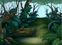 Foresta pulita e verde Fotografia Stock