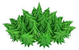 Foresta rotonda Immagine Stock