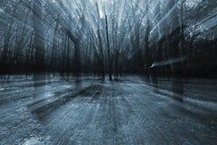 Foresta scura Immagine Stock