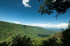 Foresta sempreverde della collina, parco nazionale di Khao Yai, Tailandia Fotografia Stock